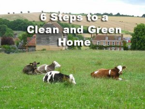 6-Steps-to-a-Clean-and-Gree