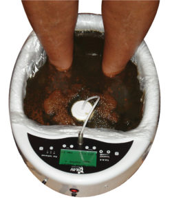 ionic foot detox machine
