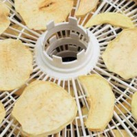 Dehydrating Foods Is Easy And Healthy